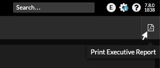 Print Executive Report