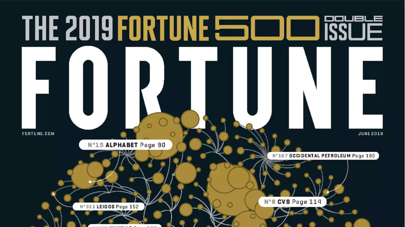 The 2019 Fortune 500 Issue