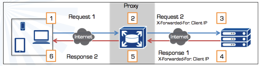 Proxy flow diagram