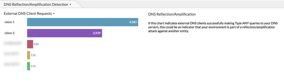 monitoring DNS ANY queries from external clients