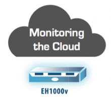 Monitoring Cloud-Based Applications