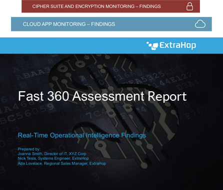 Fast 360 IT Assessment Sample Report
